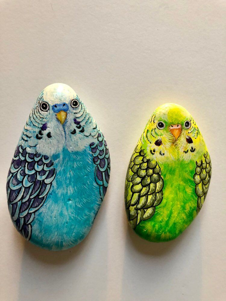 Items similar to Set of 2 Bird Painted Rocks, Parakeet rock art, Unique painted stone gifts for bird lovers on Etsy