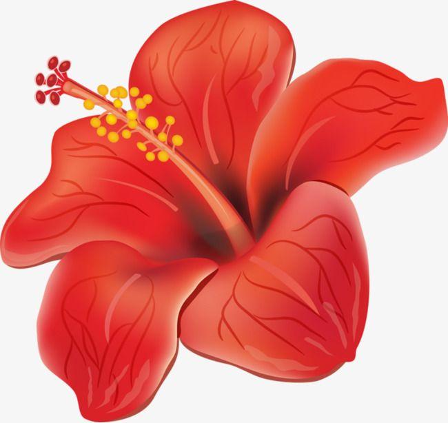 Red Hibiscus En 2020 Flores Pintadas Flores De Hibisco Dibujos De Flores