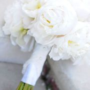 White peony bouquet with slight blush tint