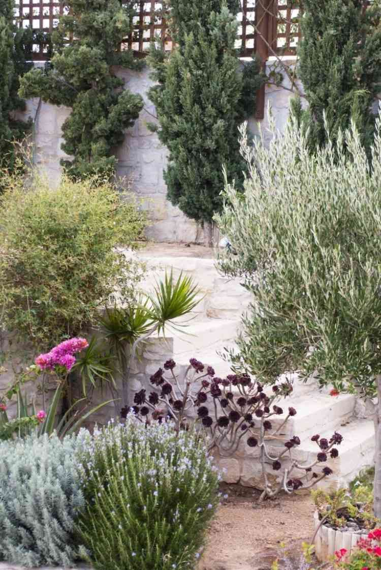 Plantes Et Amenagement Jardin Mediterraneen 79 Idees Jardin Mediterraneen Jardin Grec Amenagement De Jardin Mediterraneen