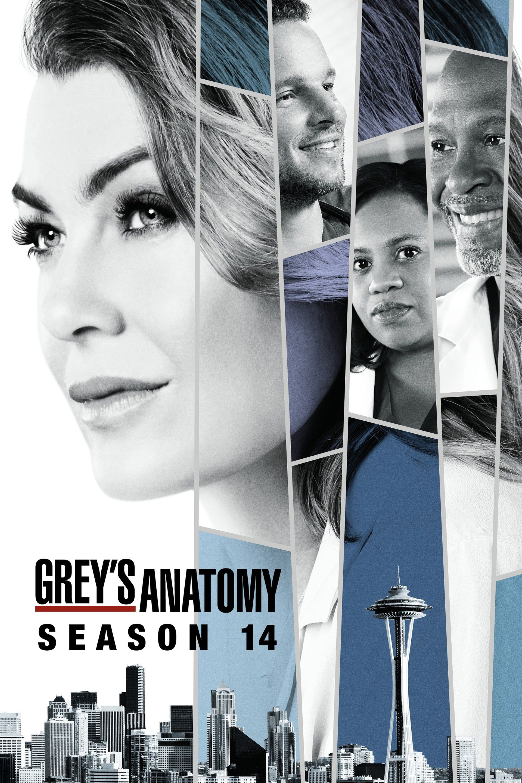 Anatomía de Grey - 14 | SERIES y PELIS en 2018 | Pinterest ...