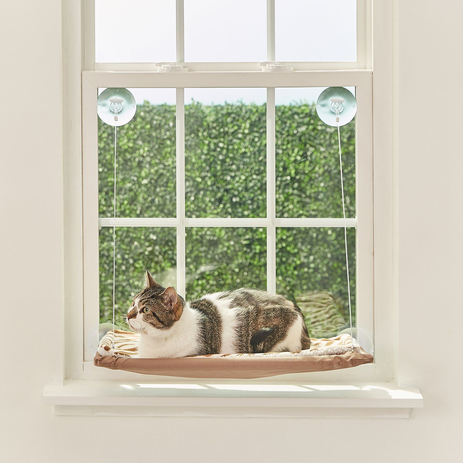 Oster Sunny Seat Window Mounted Cat Bed Brown Chewy Com Cat