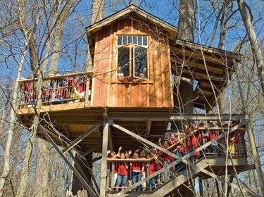 Longwood Garden Treehouse Longwood Gardens Longwood Garden