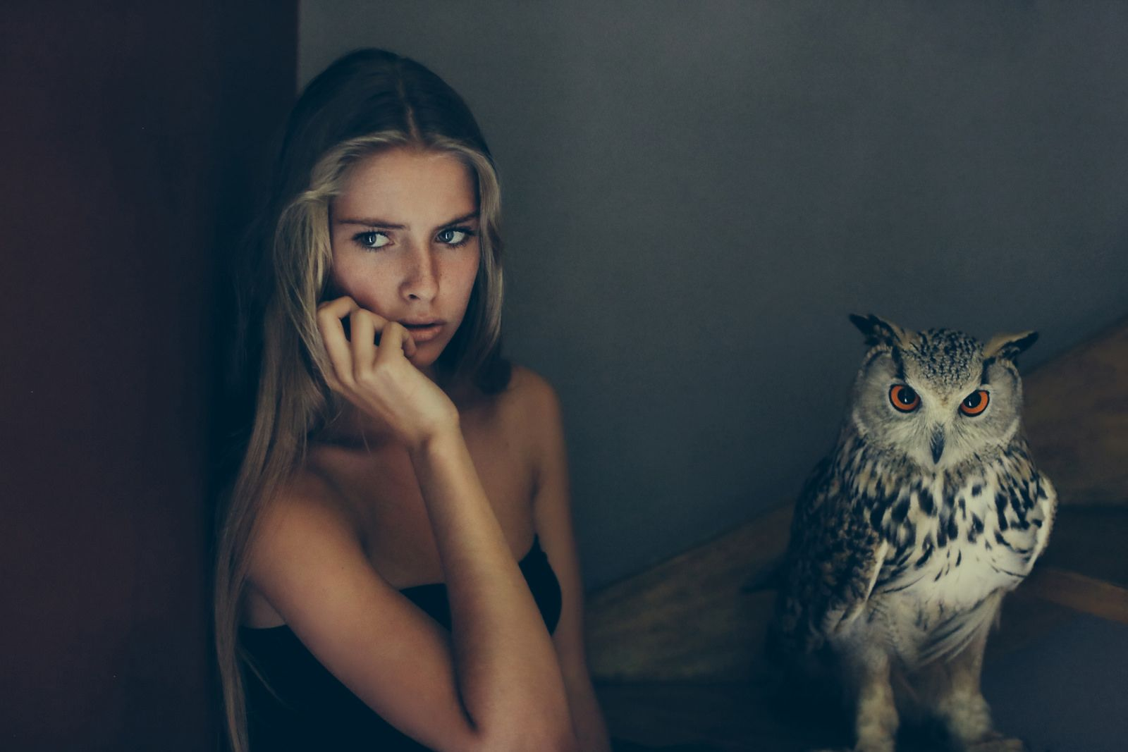 The girl with the owl | Flickr - Photo Sharing!