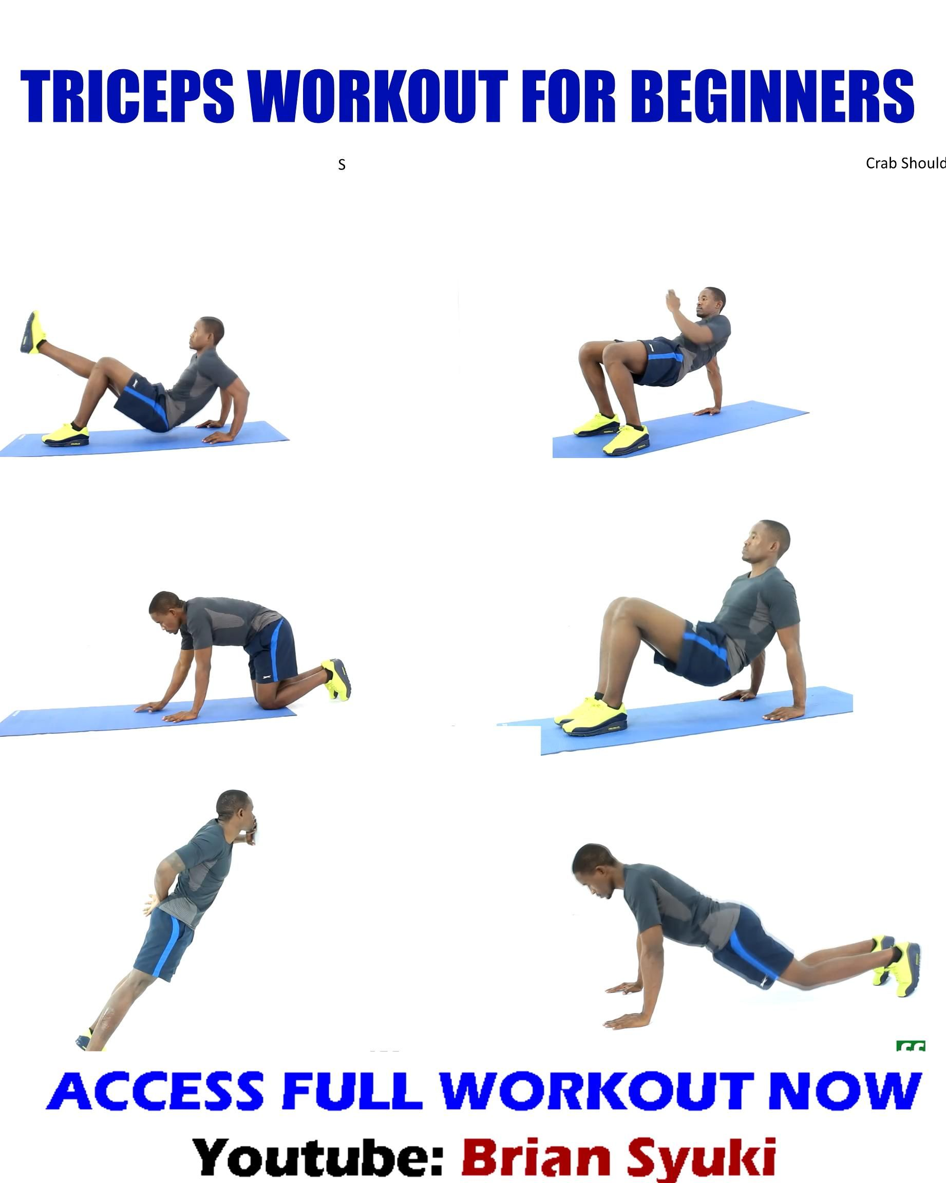 Triceps Workout for Beginners for Toned Arms - No Equipment Needed
