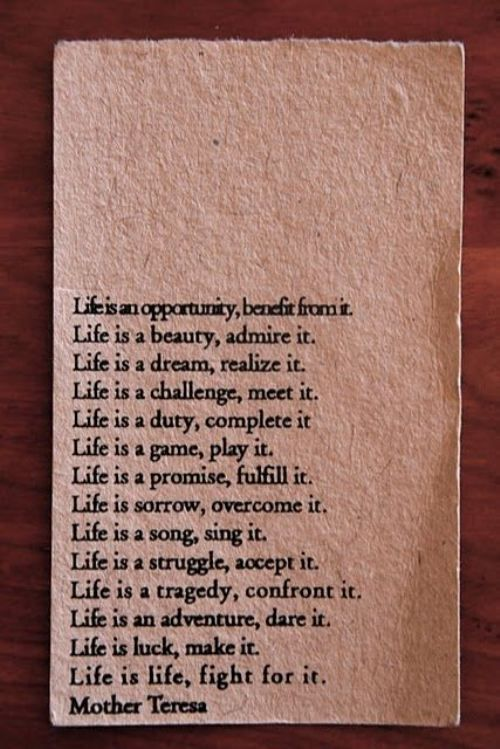 Life Is An Opportunity Benefit From Itlife Is Life Fight For It
