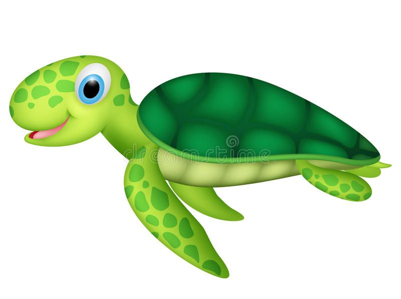 Happy Baby Sea Turtle Illustration Of Happy Baby Sea Turtle