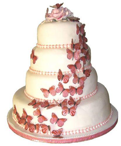 Google Image Result for http://eliteweddinglooks.com/wp-content/uploads/2012/03/pink-butterfly-wedding-cakes.jpg