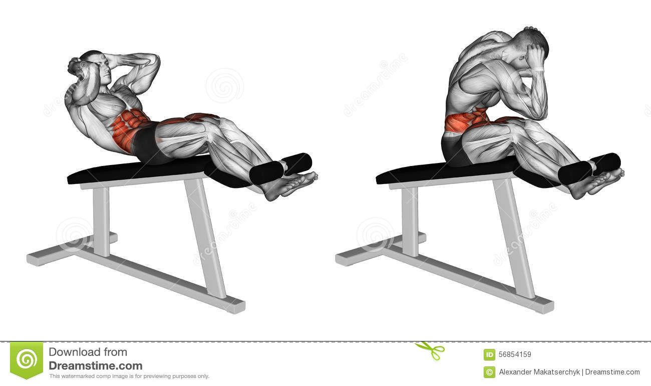 biceps leg curl exercise instructions and video weigtsmuscles