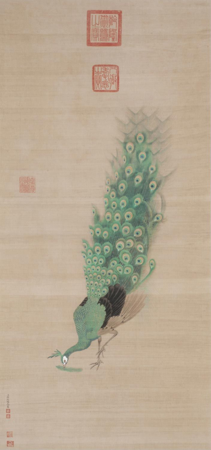 Chinese Geography Peacock Holding Feather In Beak Attributed To Jiang Tingxi