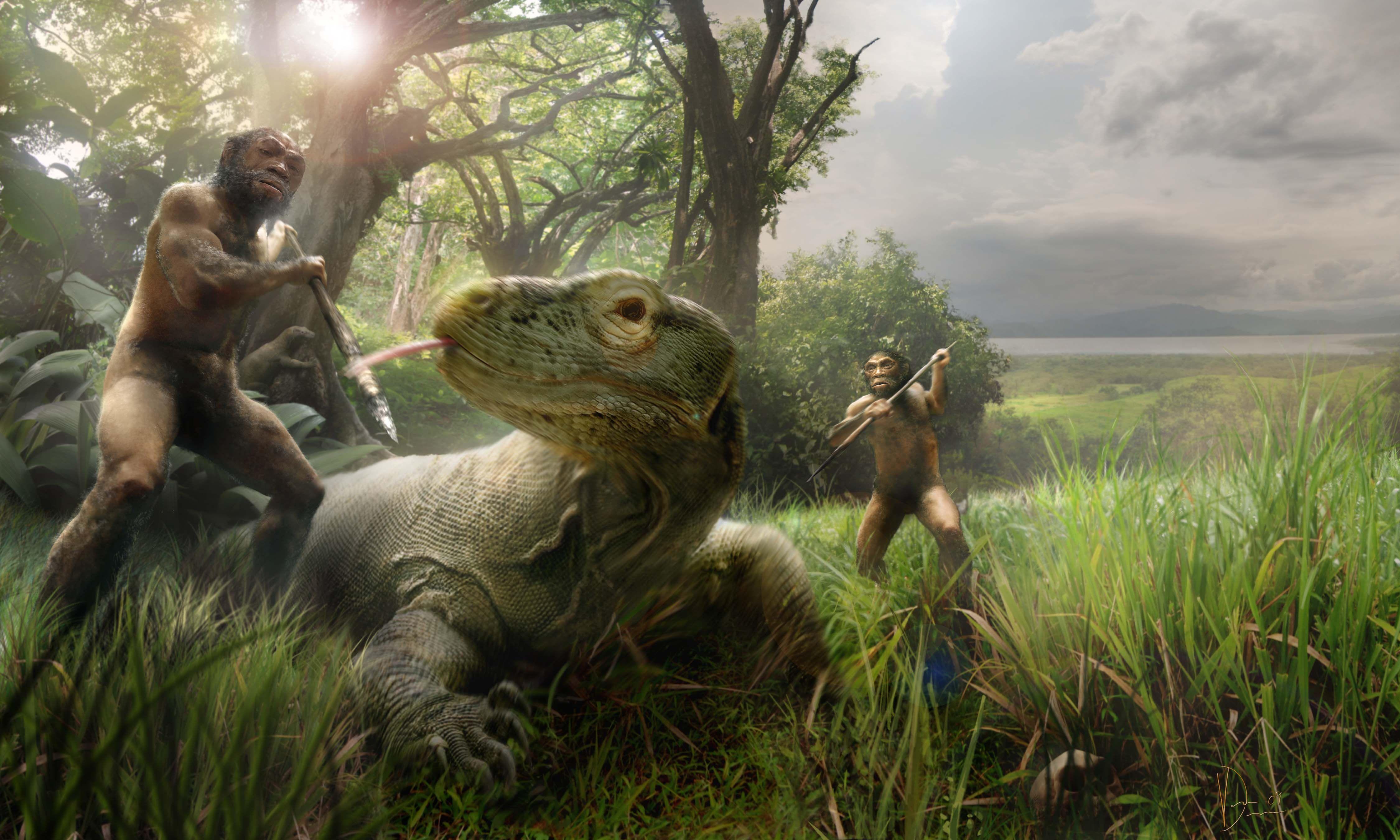 Homo floriensis v. Megalania   Showdown..   Prehistoric ...