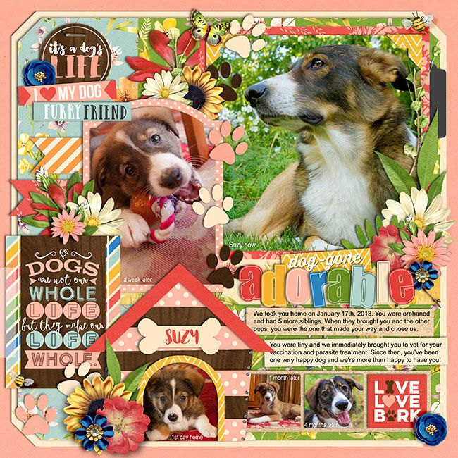 Great Outdoors Meadows By Kristin Cronin Barrow Template My Dog