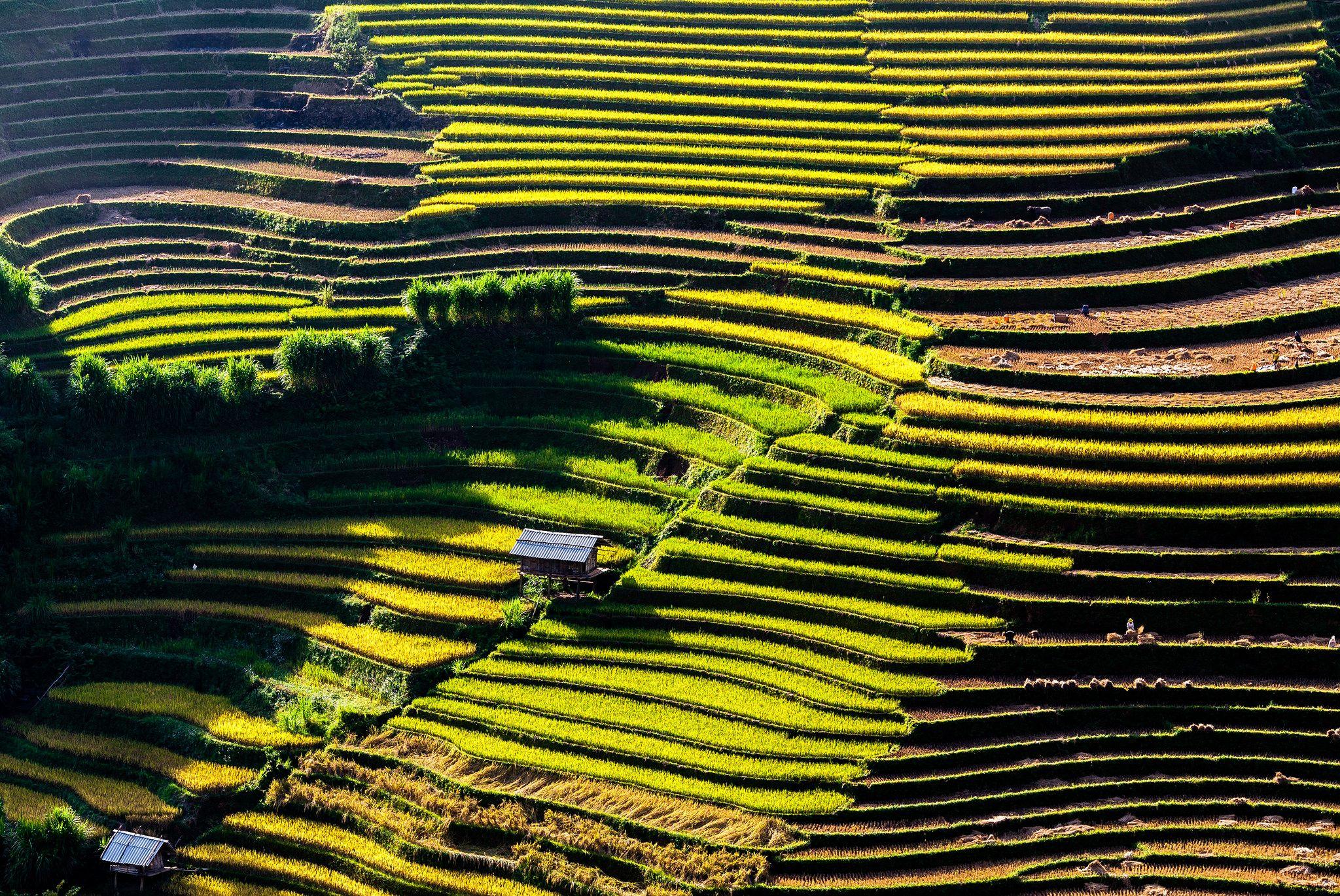 Yen Bai Vietnam - Province - Destination de Voyage, Trek