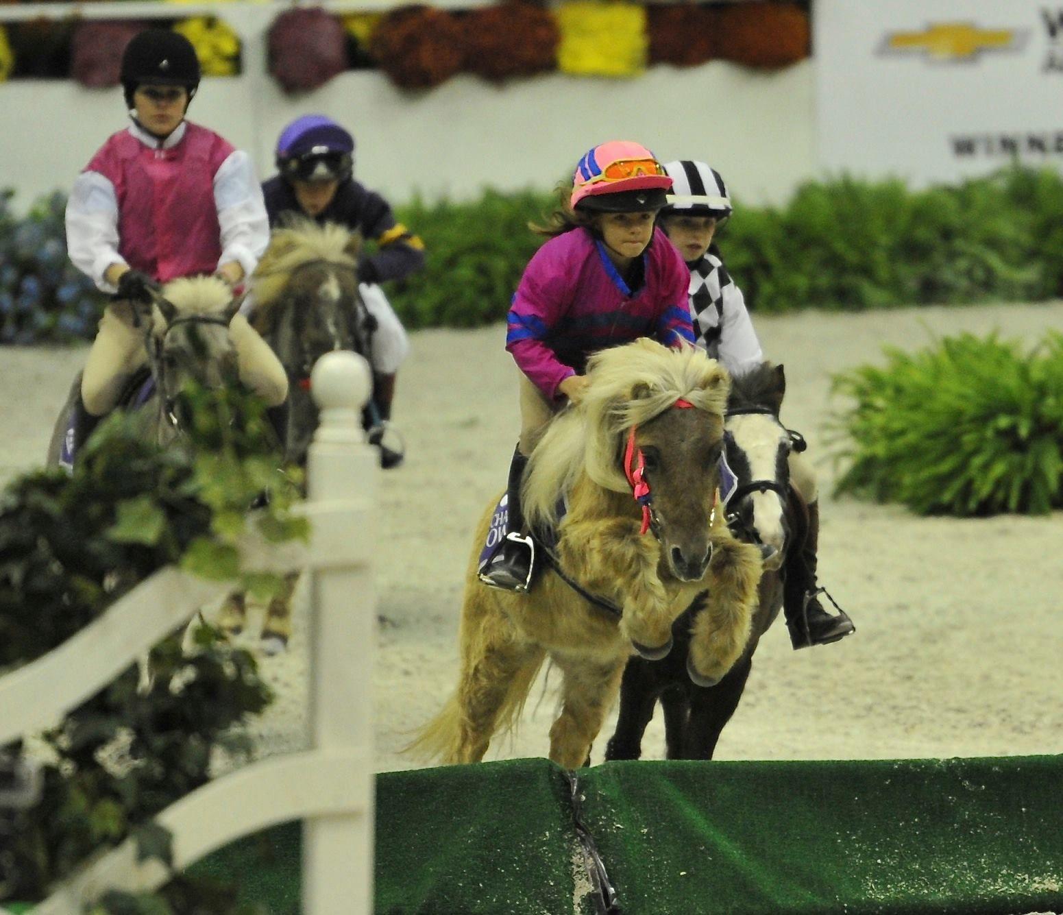 Shetland Pony race at the Washington international Horse Show