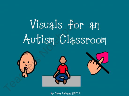 Visuals for an Autism Classroom from The Autism Helper on TeachersNotebook.com (20 pages)  - This packet includes over 40 visuals. Children with autism struggle with expressive and receptive language abilities. Visuals are an essential tool to help students with autism understand their environment and express their wants and needs. These visuals