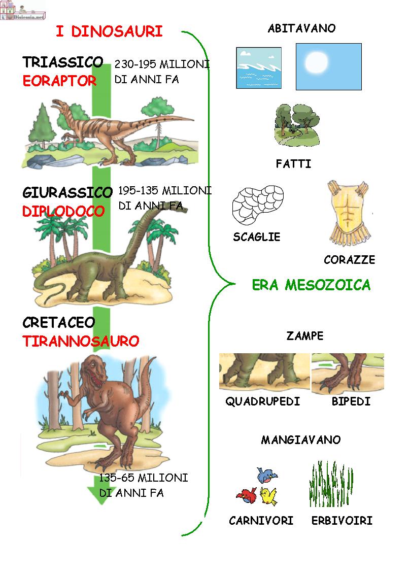 Le origini della vita   AiutoDislessia.net