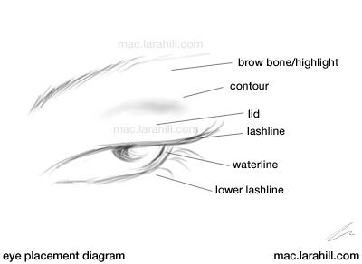 Eye diagram face circuit connection diagram face chart eyes make up morgue pinterest face charts and eyebrow rh pinterest com eye diagram ccuart Images