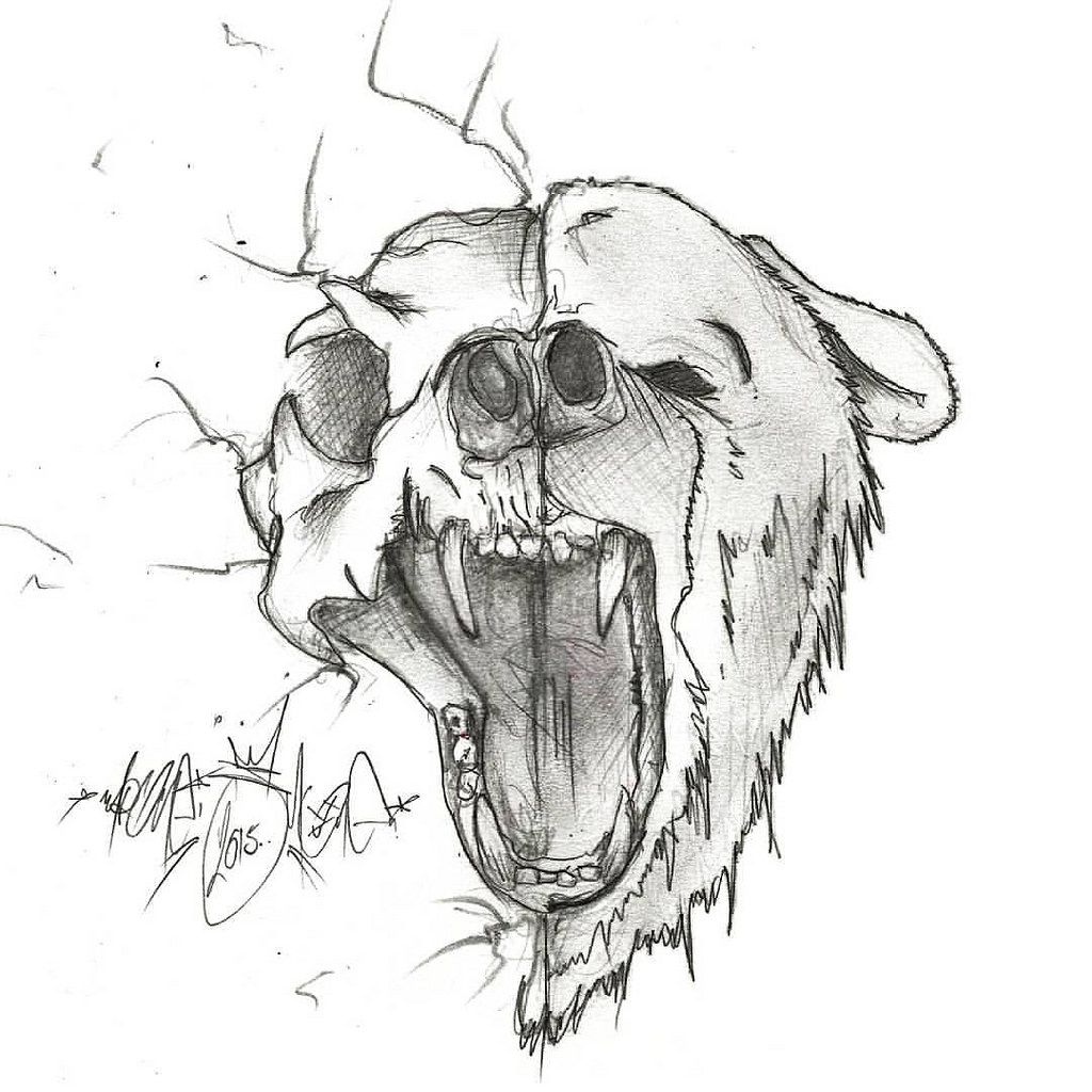 Half Bear Sketch Sketchbook Pencil Skeleton Drawing Art Tattoo Halfface Openmouth