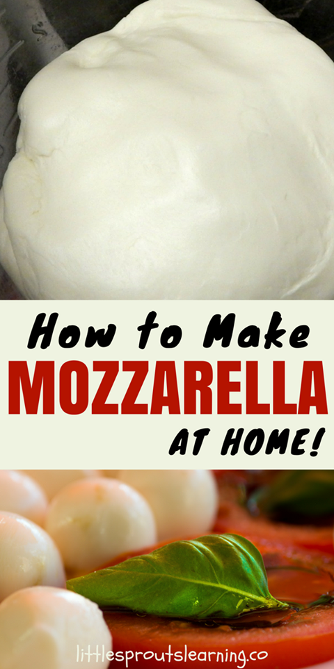 Mozzarella Cheese Making homemade mozzarella cheese is not as hard as it may sound. Mozzarella is by far the easiest cheese I have made. It also takes the least amount of special equipment.Making homemade mozzarella cheese is not as hard as it may sound. Mozzarella is by far the easiest cheese I have made. It also takes the least amount of special equipment.