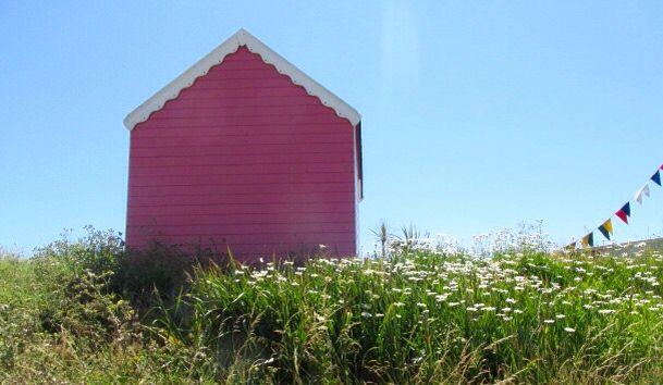 Pretty pink beach hut and daisies
