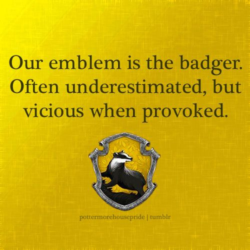 It Will Take Me A Long Time To Get Provoked But Once I Have Beware And Never Forget We Are Parti Harry Potter Quote Hufflepuff Pride Universal Paraphrase Quizlet Effectively Message One Should Mean
