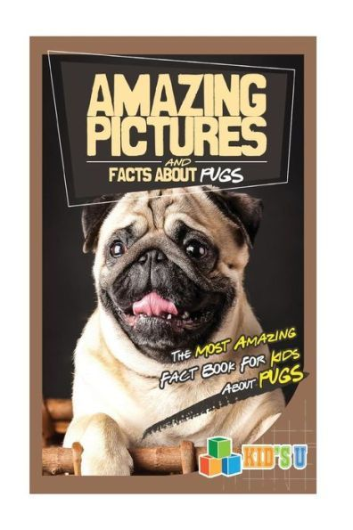 Amazing Pictures And Facts About Pugs The Most Amazing Fact Book