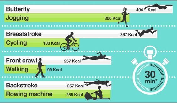 Lap swimming Calories Burned Comparison | Mermaid Life | Swimming