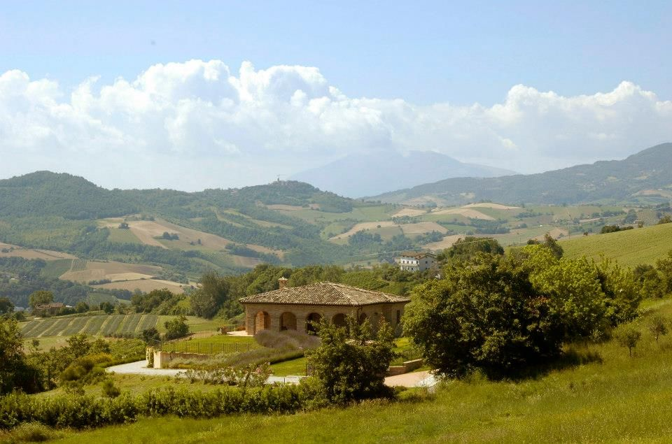 The villa situated in the middle of Le Marche hills.