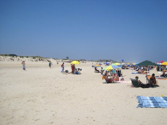 Delaware Seas State Park Rehoboth Beach See 341 Reviews Articles And 122 Photos Of Ranked No 6 On Tripadvisor Among 68