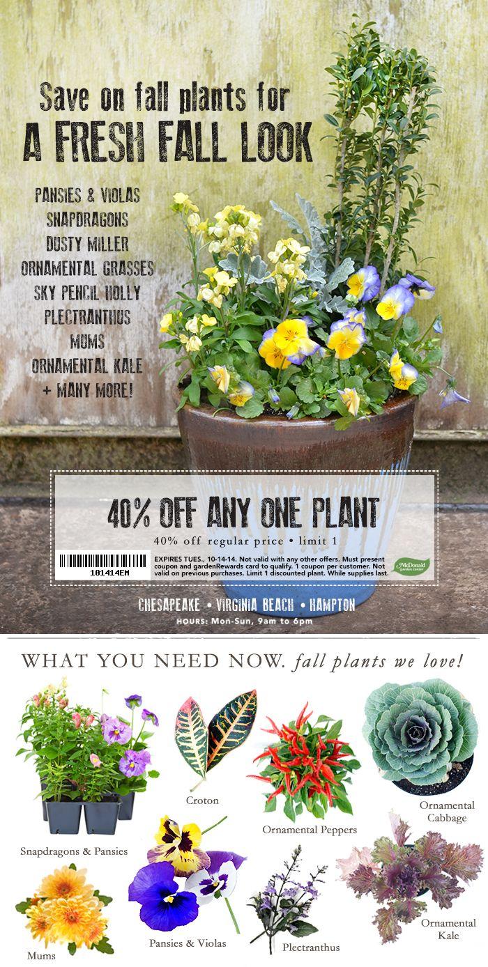 Pin On Greenhouse