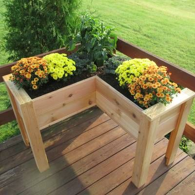 August Grove Gunderson L-Shaped Multi-level Cedar Planter Box -   16 elevated raised garden