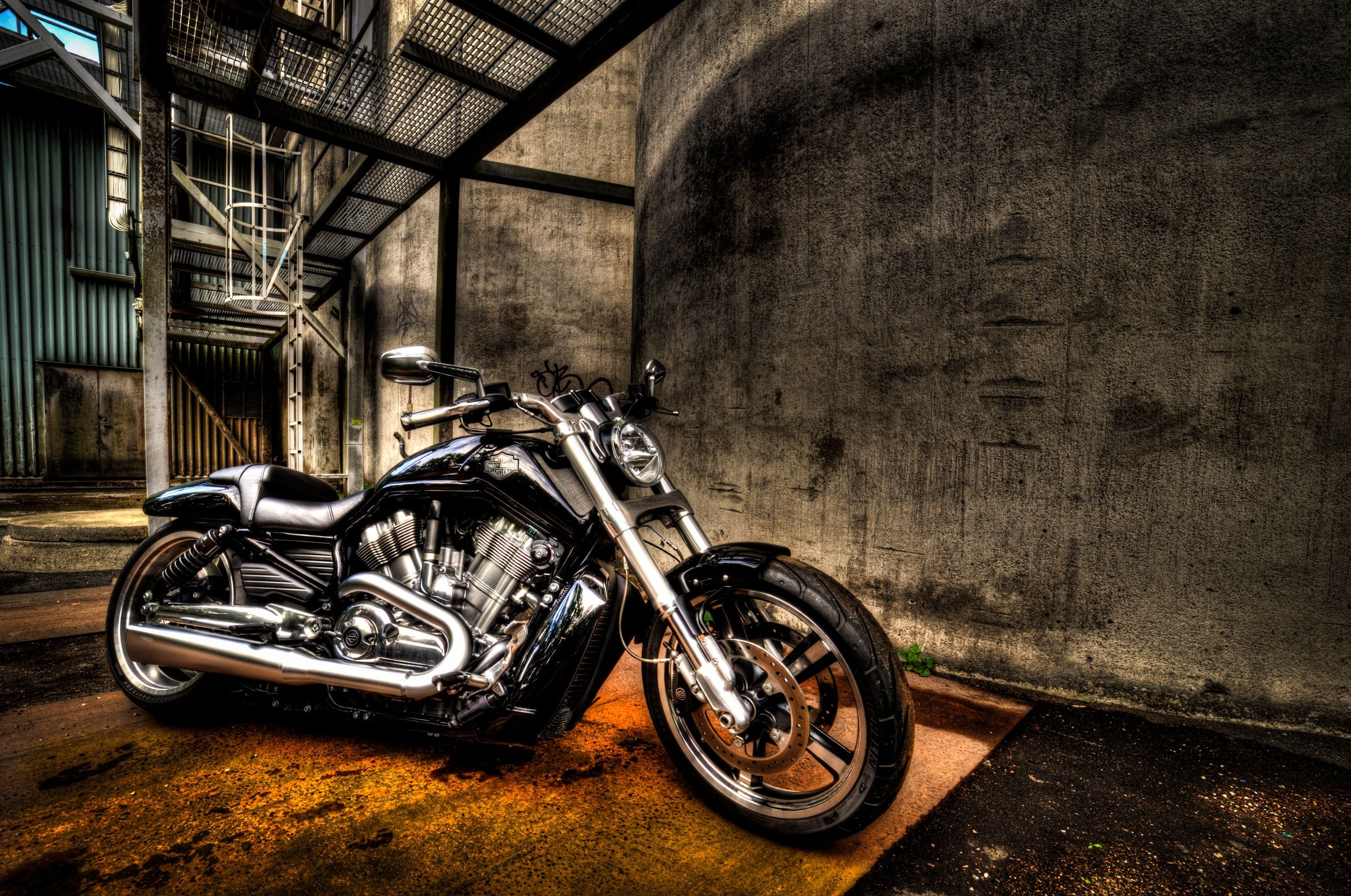 Muscle Harley V Rod Inspiration for Future Build