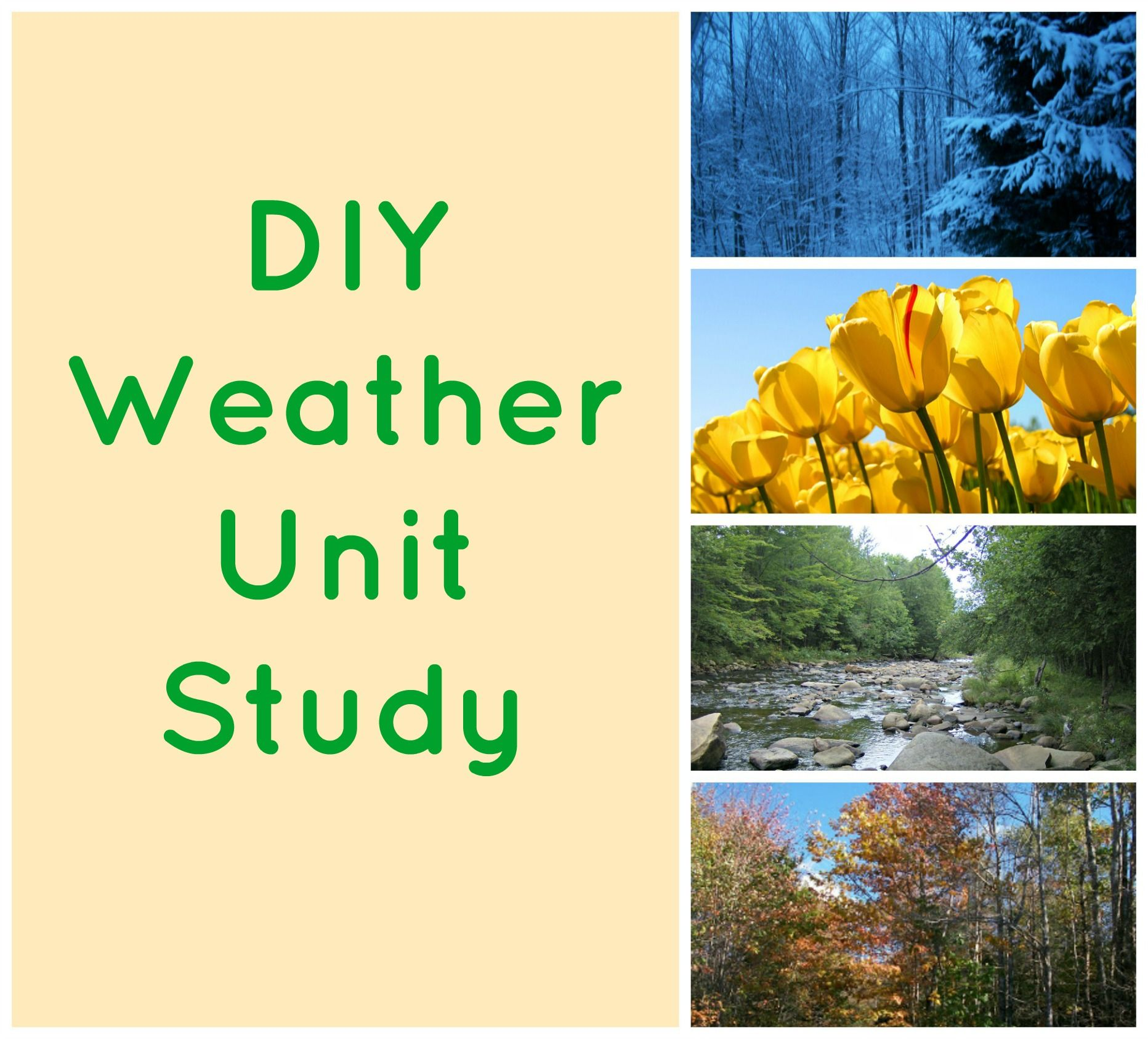 Weather And Climate Worksheets