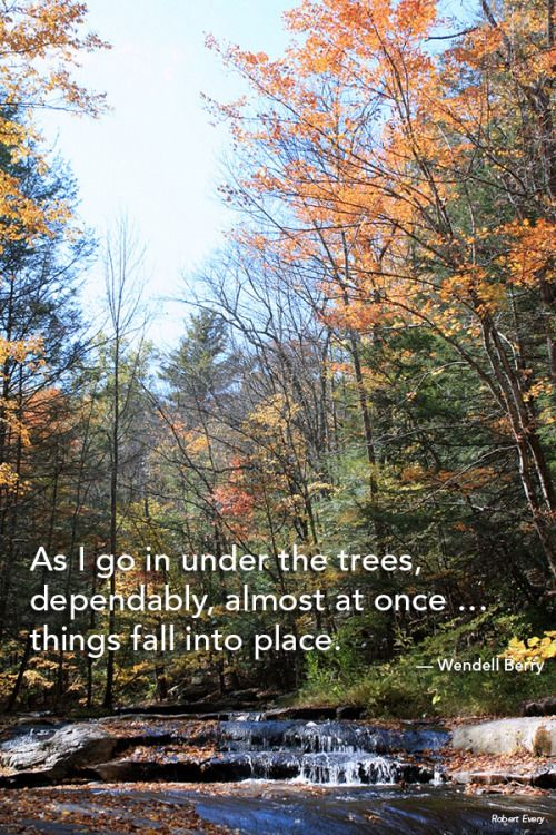 Pin by Mohonk Preserve on Nature Quotes