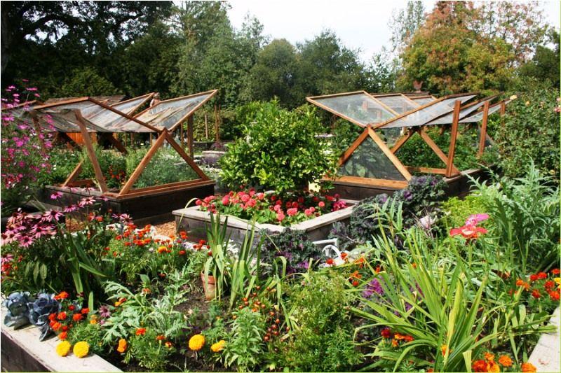 Best Of Kitchen Garden Design