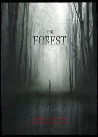 The Forest 2016 Online Watch Free A2z Movie Stream Into The Forest Movie Scary Films Forest