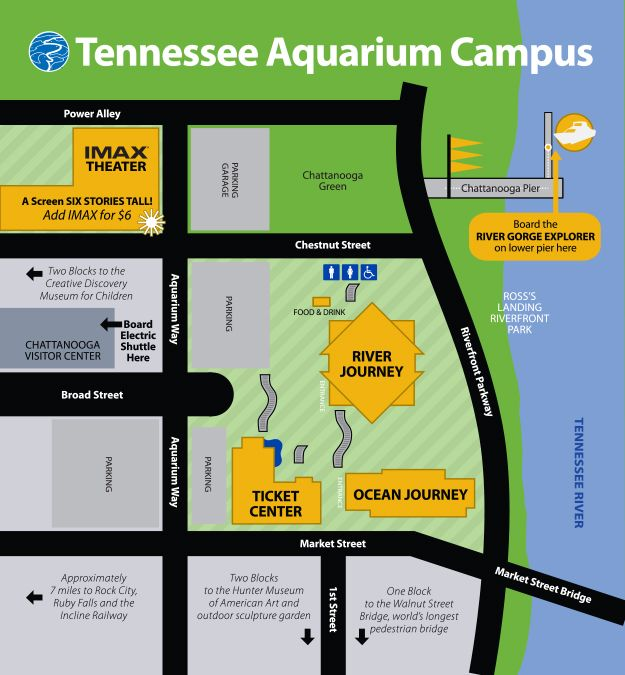 Tennessee Aquarium Chattanooga TN Favorite Places Pinterest