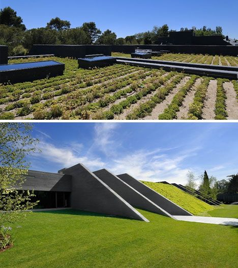 Concrete Green Roof Ramp Green Roof Roof Design Green Roof System