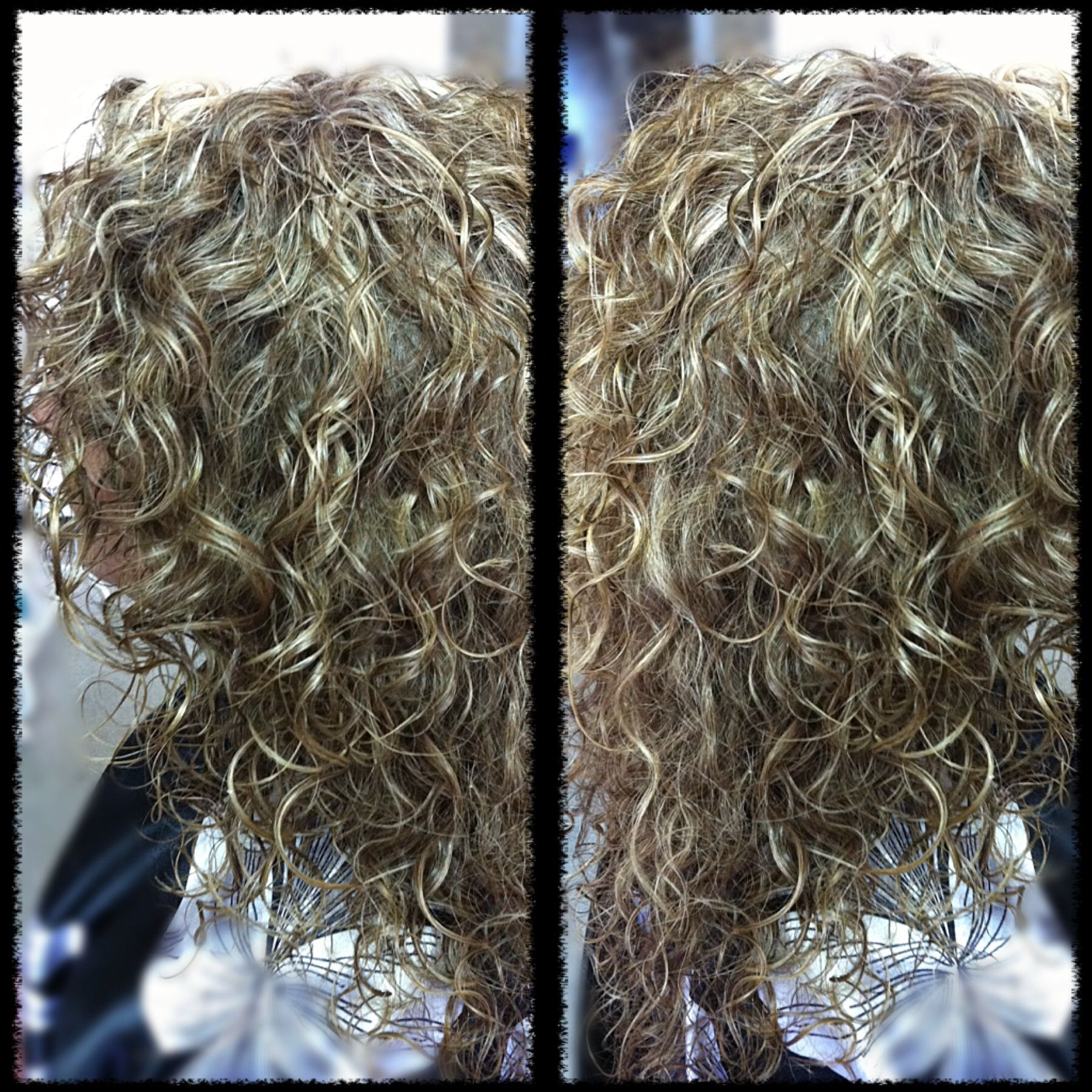 Natural Curly Hair With Blonde Highlights Driveeapusedmotorhome