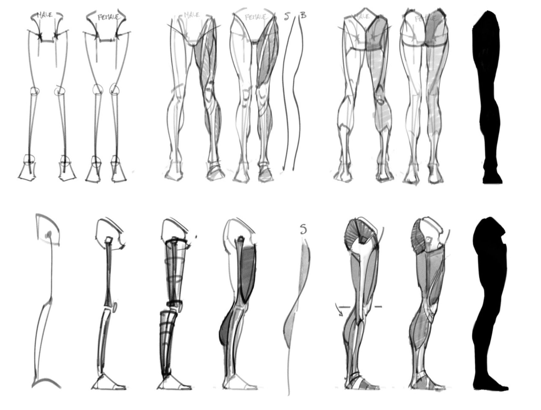Anatomy Reference | Anime-drawing | Pinterest | Anatomy ...