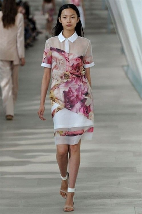 Gorgeous roses and sheer at PREEN BY THORNTON BREGAZZI SPRING / SUMMER 2013