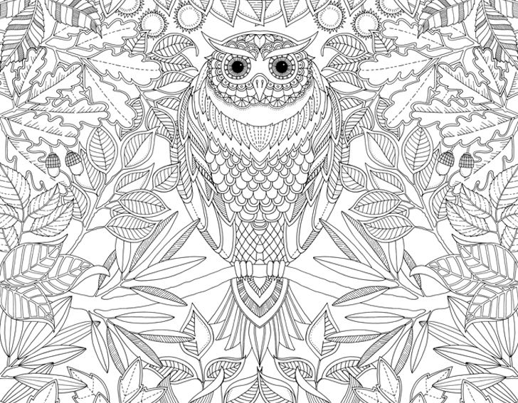 Unleash Your Inner Child With Johanna Basfords Coloring Books For Adults Colouring In BooksColoring Pages