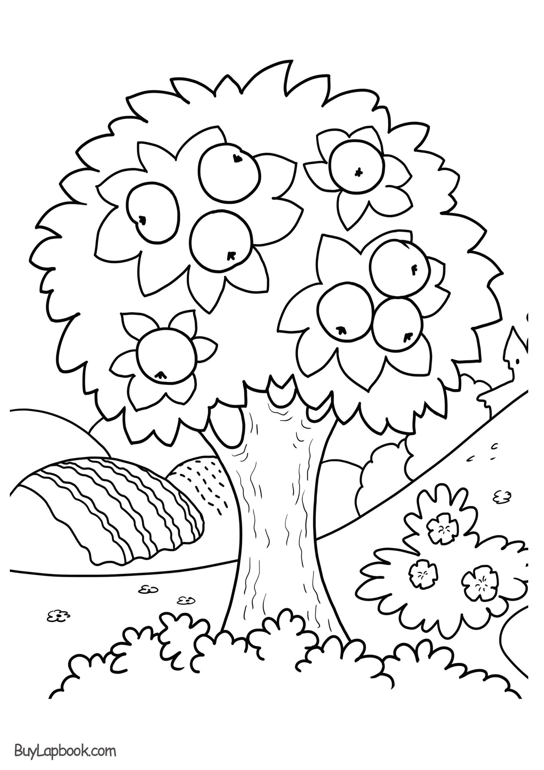 Four Seasons Kindergarten Worksheets Coloring Apple Tree