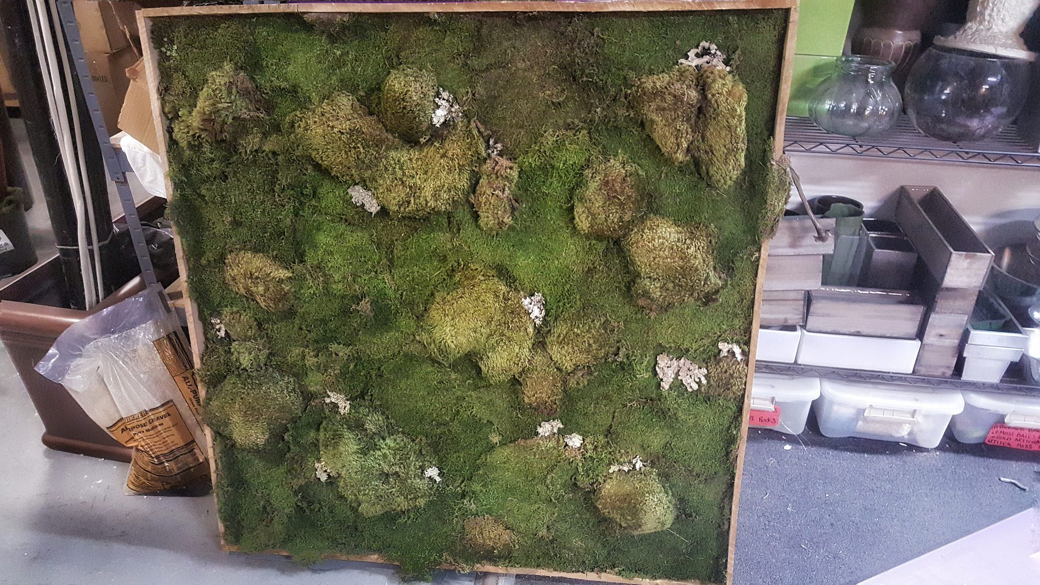 diy moss wall frame