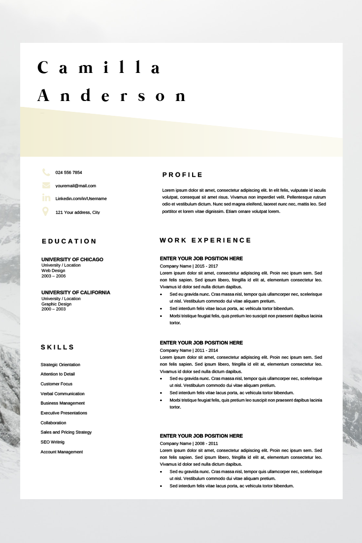 Resume Template Microsoft Word Professional CV Layout