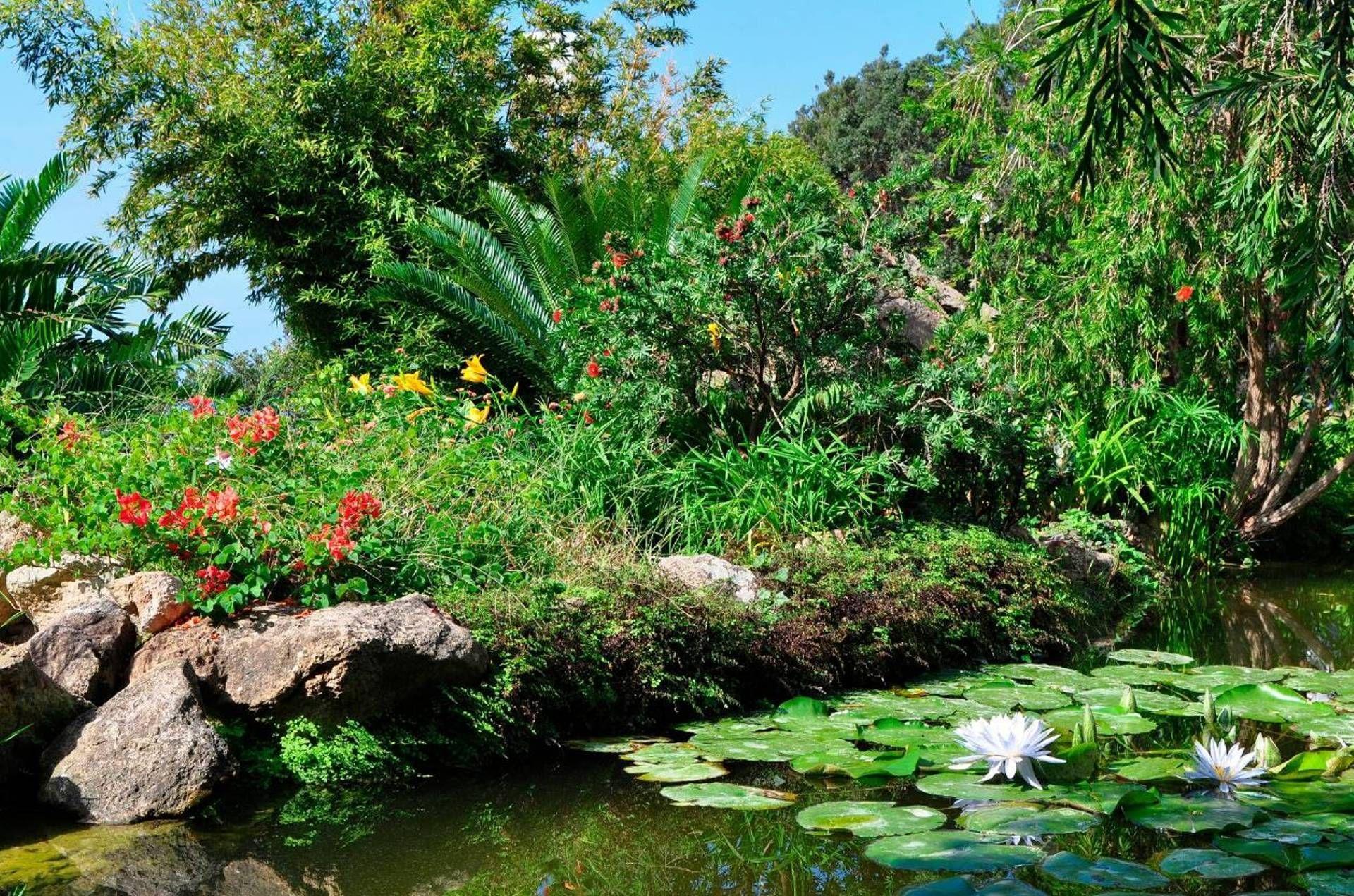 Découvrez la plus belle île d'Europe... Ischia
