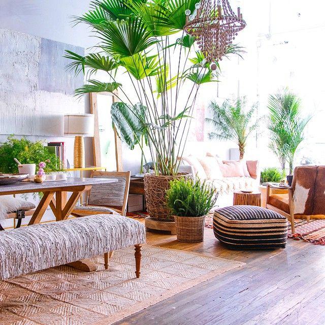 Styled by Justina Blakeney (photo by @Dabito) UrbanJungle - decoracion de interiores con plantas