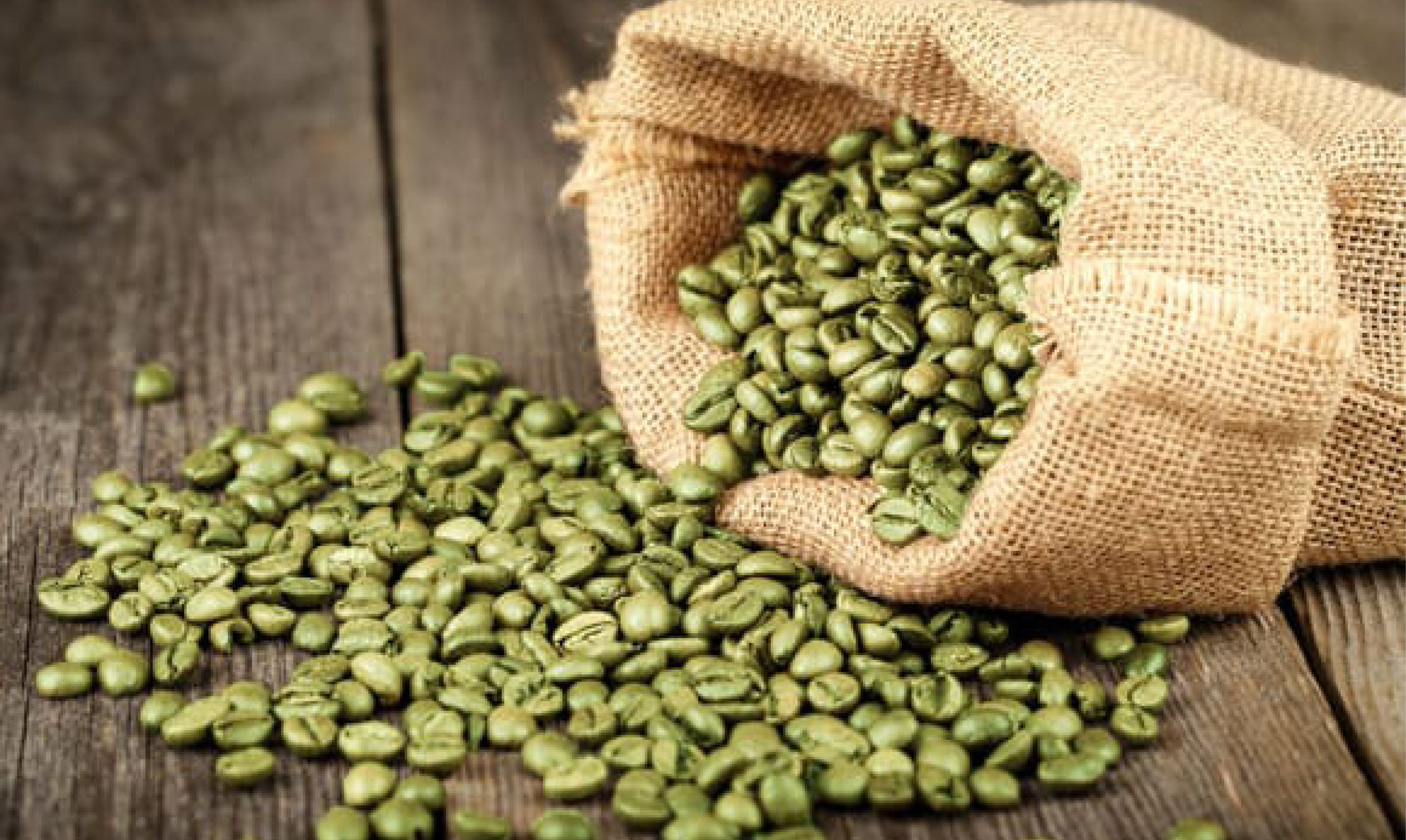 The Benefits of Green Coffee Bean Green coffee bean