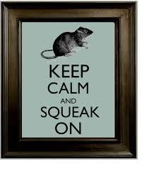 Image result for keep calm its a rat not a shark