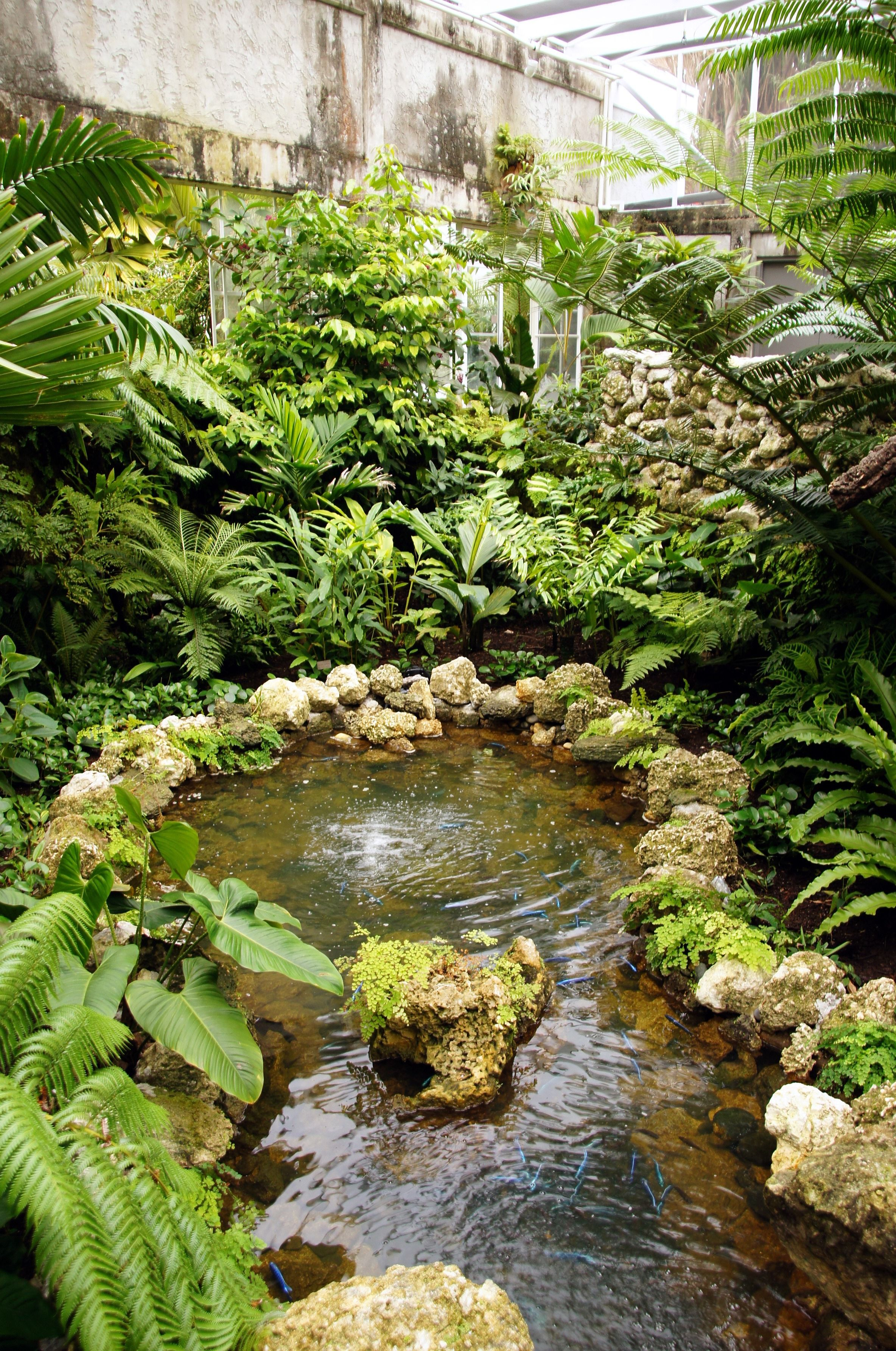 Fairchild Tropical Botanical Gardens in Miami   Fairchild ...